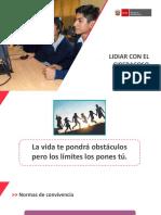 PPT- LIDIAR CON EL CIBERACOSO