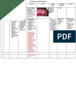 49309_TABEL LESI  MERAH PUTIH PIGMENTASI - Copy.docx