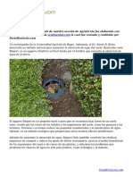 Un método natural para evitar inundaciones y enriquecer los suelos