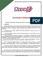 CURRICULO E DIRETRIZES