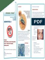 01 Hepatitis ABC