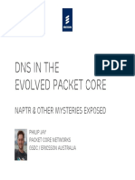 DNS in the Evolved Packet Core (March, 2010)