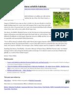 Birdlife.org-Biofuels Policy Threatens Wildlife Habitats-2988037