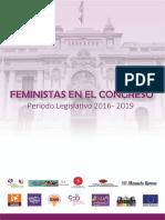 Feministas Congreso