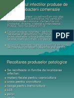 Enterobacterii Comensale.pp
