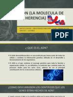 ADN (LA MOLECULA DE LA HERENCIA).pptx