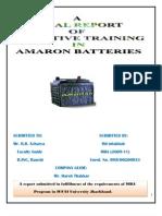 Report on Amaron Batteries Ltd.