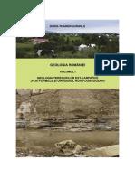 Geologia Romaniei vol. 1.pdf