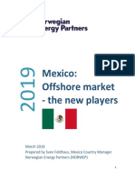 Mexico_New_Players_Market_report_2019-03-20 (1)