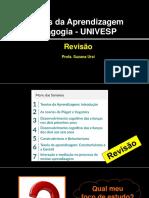 revisão Teorias da Aprendizagem - Suzana Ursi (1)