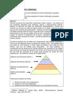 Trabajo en Equipo1_pdf