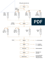 flujograma de CRA de carne 2.pptx
