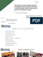 Presentación11.pptx