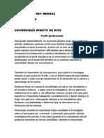Perfil profesional  GBI