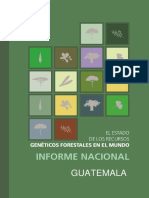 Avance del mejoramiento genético Forestal