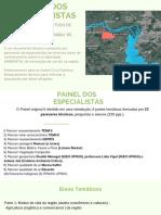 Painel dos especialistas.pdf