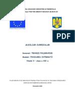 Finisare integrata (2).docx