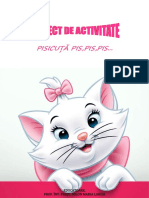 PROIECT-DEC-LARI-FINAL.docx