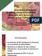 Acción antimicrobiana de extractos de plantas nativas chilenas sobre Escherichia coli y Salmonell