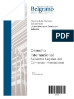 dcho internacional -  benedit.pdf