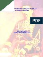 Tudorache Georgiana.pdf