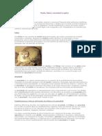 [Medicina Veterinaria] ETOLOGIA - Miedo, fobia y ansiedad en gatos.pdf