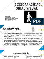 discapacidad visual-braile.pptx