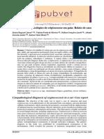 Diagnostico_citopatologico_de_criptococose_em_gata
