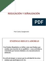 Regulación señalización