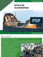 Dinámica de     los ecosistemas.ppt