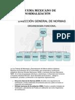 ESQUEMA MEXICANO DE NORMALIZACION.docx