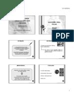 Doenças infecciosas dos felinos.pdf