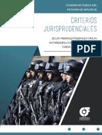 CRITERIOS JURISPRUDENCIALES EN MATERIA DE SEG PUB.pdf