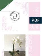 Catálogo Brunia