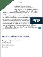 Funções dos Sistemas Internos e os Zang Fu TCC