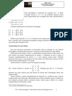 Álgebra Linear - Aula 8 - Sistemas Homogêneos