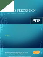 Sense perception PPT