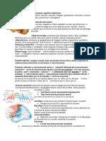 13- Funciones cognitivas superiores