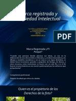 Derechos de autor presentación completa.pptx