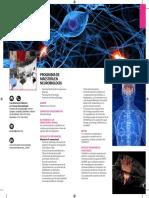 dip_neuro.pdf