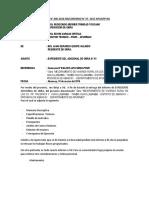 INFORME  adicional de residente.docx