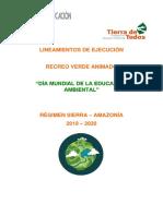 lineamientos_de_ejecuciÓn_2020_(002)0650177001578595912 M AMBIENTE.pdf
