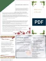 Boletín Diciembre 2010