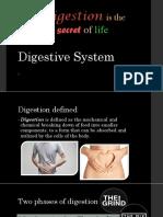 digestive-basic