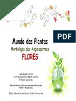 Apresentacao_Flores.pdf