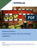 Somali economic challenges
