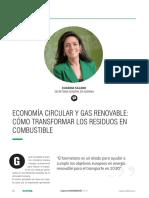 RETEMA217-16-17.pdf