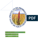 415102892-Proyecto-de-Inversion-III-QUINUA.docx