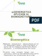 BIOENERGETICA I.pdf