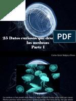 Carlos Erick Malpica Flores - 25 Datos Curiosos Que Desconocías de Las Medusas, Parte I
